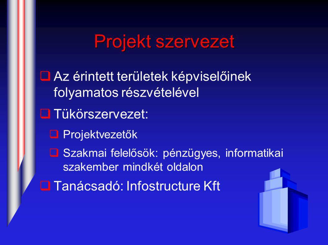 Projekt szervezet  Az érintett területek képviselőinek folyamatos részvételével  Tükörszervezet:  Projektvezetők  Szakmai felelősök: pénzügyes, informatikai szakember mindkét oldalon  Tanácsadó: Infostructure Kft