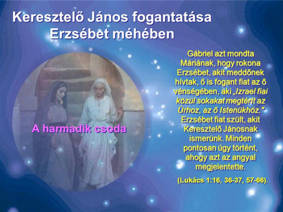 """Gábriel azt mondta Máriának, hogy rokona Erzsébet, akit meddőnek hívtak, ő is fogant fiat az ő vénségében, aki """"Izrael fiai közül sokakat megtérít az Úrhoz, az ő Istenükhöz. Erzsébet fiat szült, akit Keresztelő Jánosnak ismerünk."""