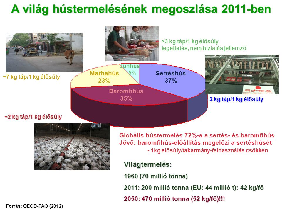 A világ hústermelésének megoszlása 2011-ben Forrás: OECD-FAO (2012) Világtermelés: 1960 (70 millió tonna) 2011: 290 millió tonna (EU: 44 millió t): 42 kg/fő 2050: 470 millió tonna (52 kg/fő)!!.