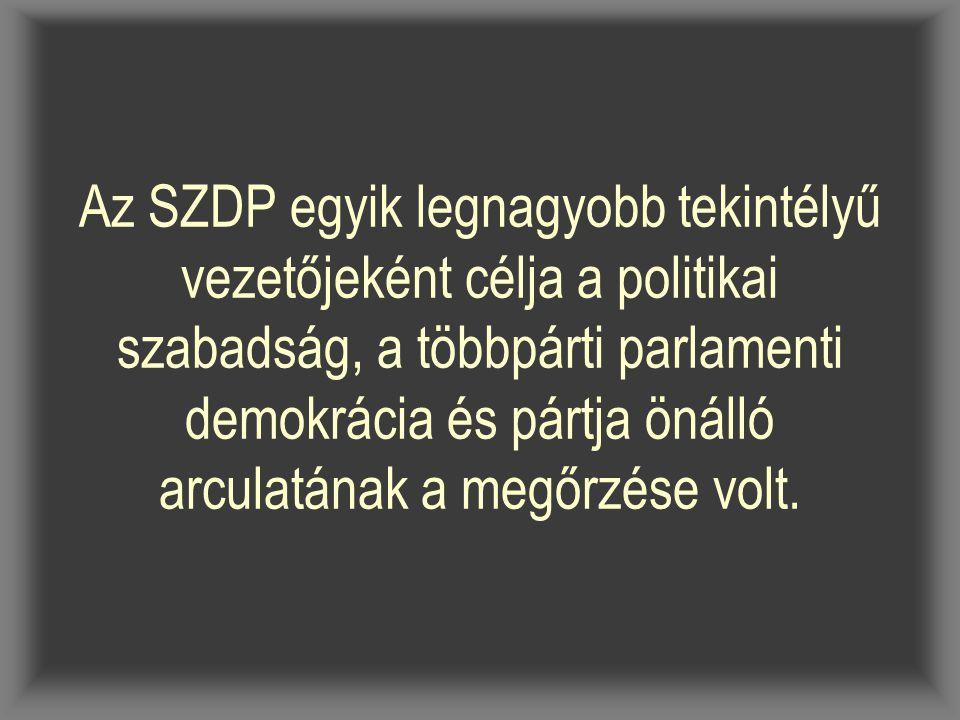 Az SZDP egyik legnagyobb tekintélyű vezetőjeként célja a politikai szabadság, a többpárti parlamenti demokrácia és pártja önálló arculatának a megőrzé