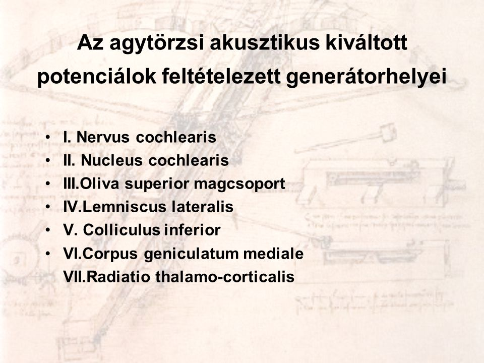 Az agytörzsi akusztikus kiváltott potenciálok feltételezett generátorhelyei •I. Nervus cochlearis •II. Nucleus cochlearis •III.Oliva superior magcsopo