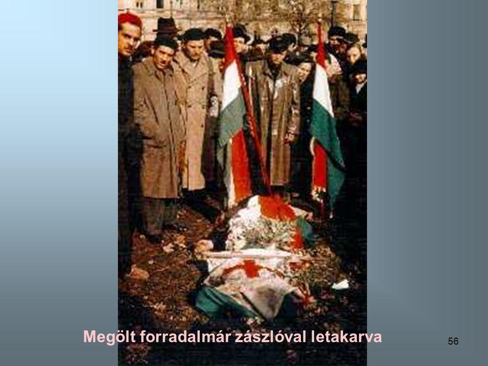 55 Megölt forradalmár zászlóval letakarva