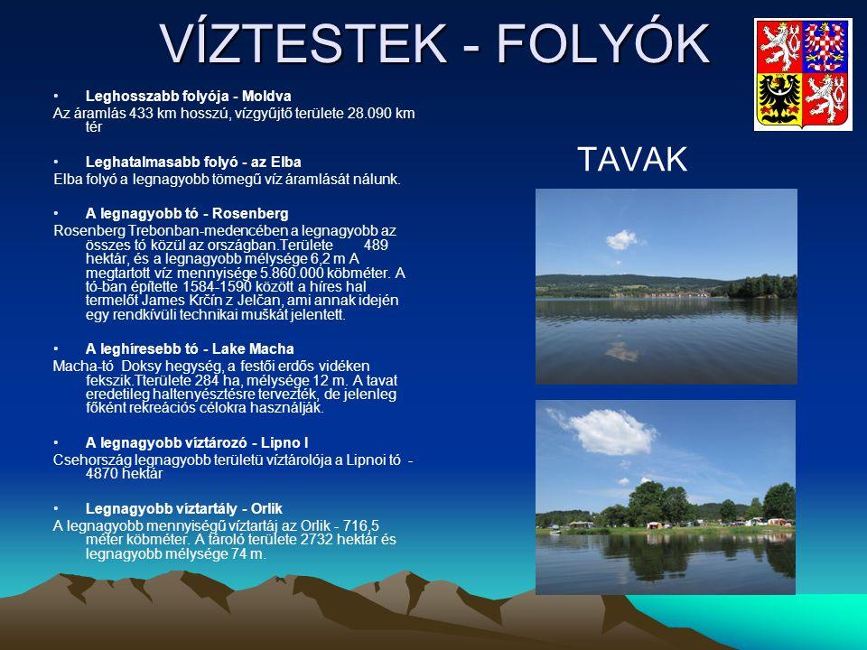 VÍZTESTEK - FOLYÓK •Leghosszabb folyója - Moldva Az áramlás 433 km hosszú, vízgyűjtő területe 28.090 km tér •Leghatalmasabb folyó - az Elba Elba folyó