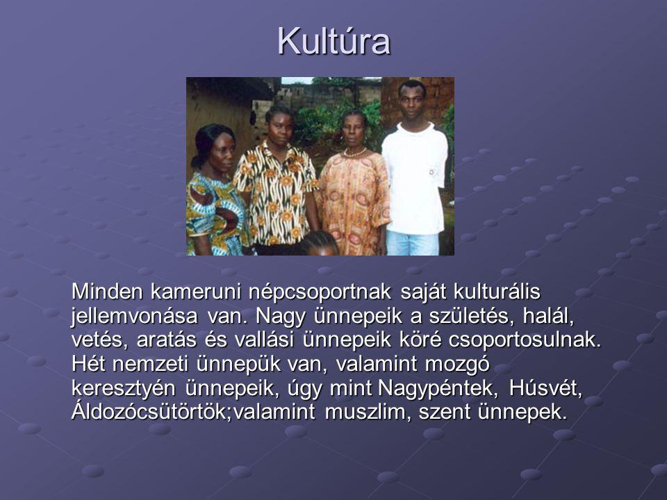 Kultúra Minden kameruni népcsoportnak saját kulturális jellemvonása van. Nagy ünnepeik a születés, halál, vetés, aratás és vallási ünnepeik köré csopo
