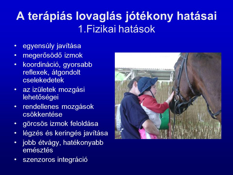 A terápiás lovaglás jótékony hatásai 1.Fizikai hatások •egyensúly javítása •megerősödő izmok •koordináció, gyorsabb reflexek, átgondolt cselekedetek •