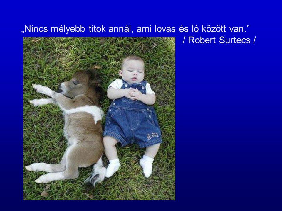 """""""Nincs mélyebb titok annál, ami lovas és ló között van."""" / Robert Surtecs /"""