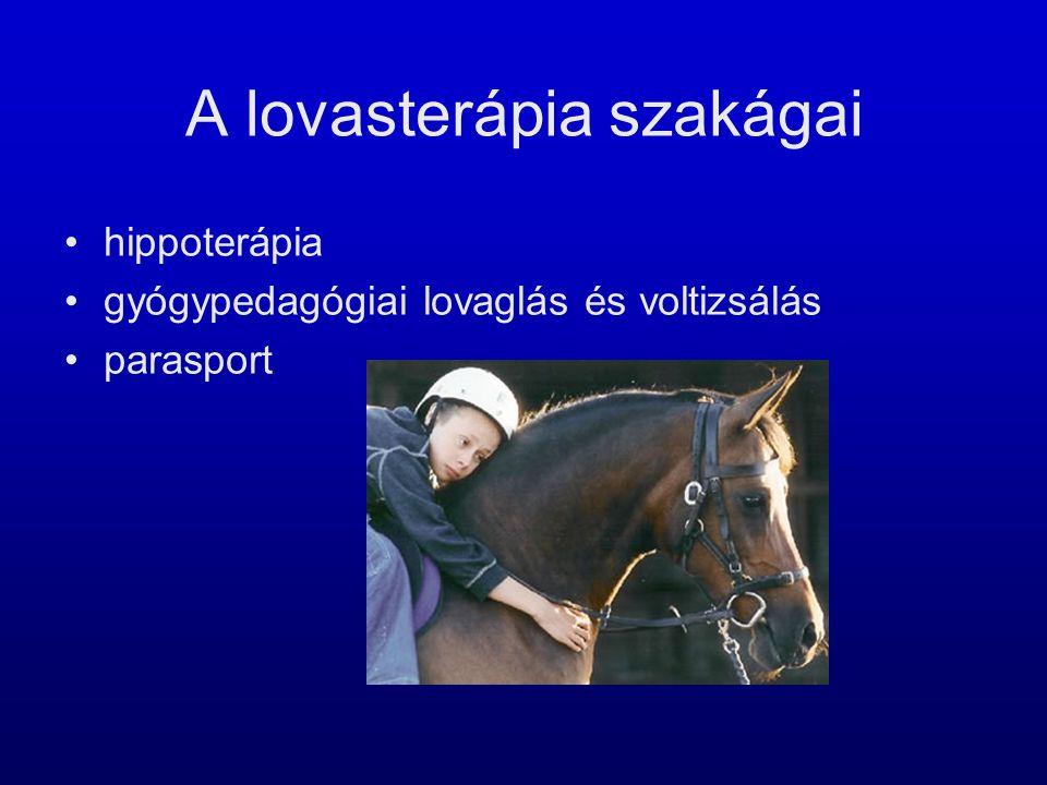 A lovasterápia szakágai •hippoterápia •gyógypedagógiai lovaglás és voltizsálás •parasport