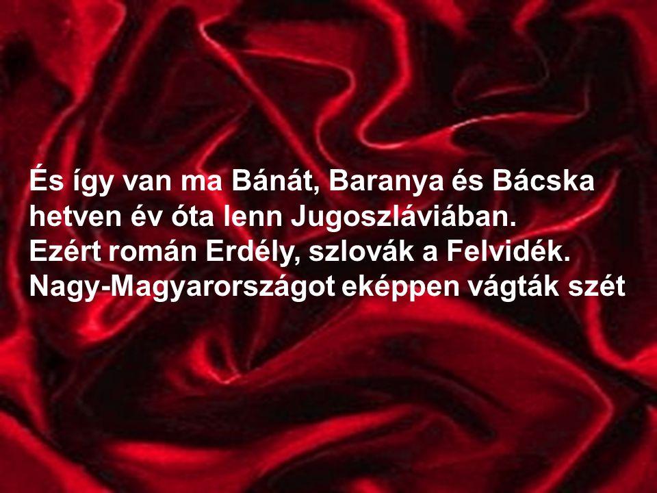 És így van ma Bánát, Baranya és Bácska hetven év óta lenn Jugoszláviában.