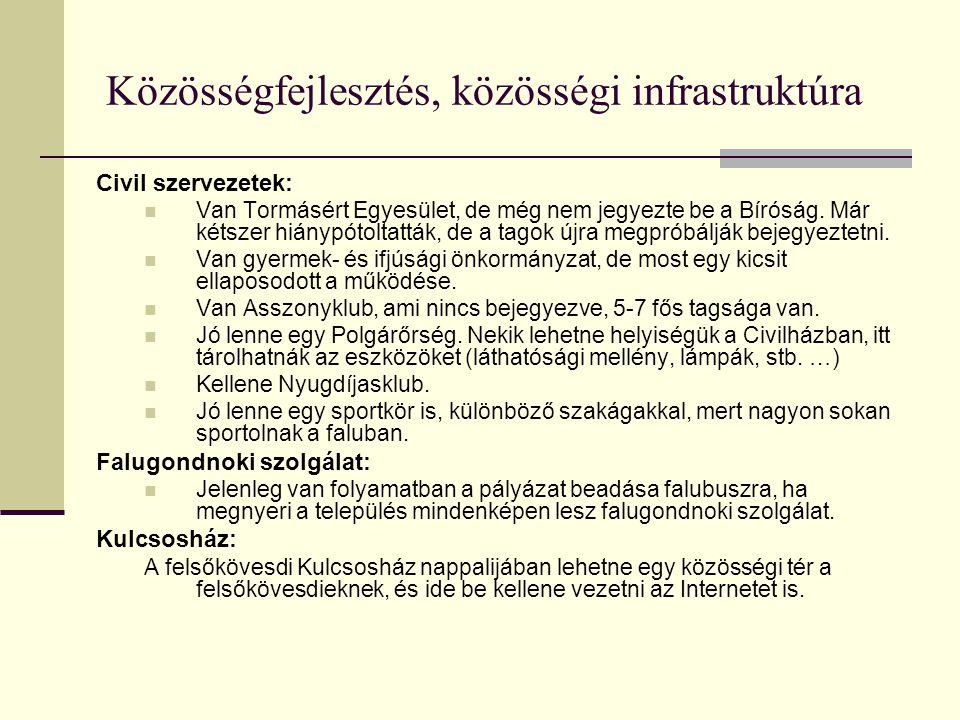 Közösségfejlesztés, közösségi infrastruktúra Civil szervezetek:  Van Tormásért Egyesület, de még nem jegyezte be a Bíróság. Már kétszer hiánypótoltat
