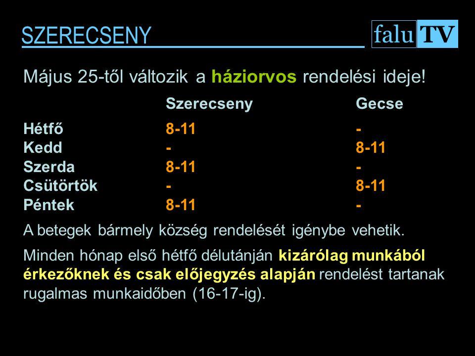 """SZERECSENY falu TV """"Gyűr Menti Óvodák Játékfesztiválja 2009. 05. 16."""