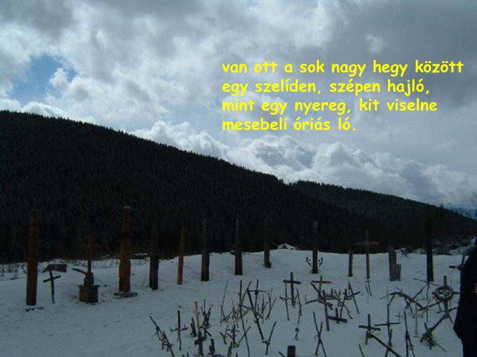 , s hol a fenyők olyan mélyen kapaszkodnak a vén földbe, kitépni vihar sem tudja másképpen, csak kettétörve