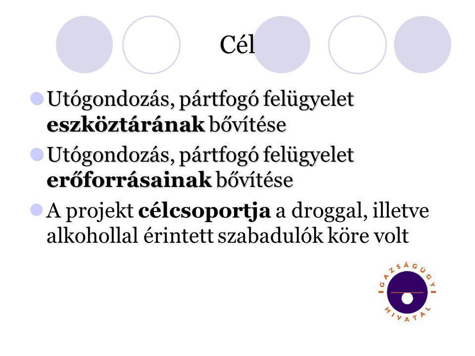 Cél  Utógondozás, pártfogó felügyelet eszköztárának bővítése  Utógondozás, pártfogó felügyelet erőforrásainak bővítése  A projekt célcsoportja a dr