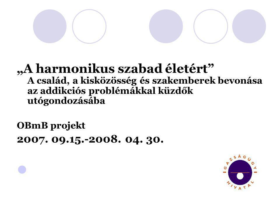 """""""A harmonikus szabad életért"""" A család, a kisközösség és szakemberek bevonása az addikciós problémákkal küzdők utógondozásába OBmB projekt 2007. 09.15"""