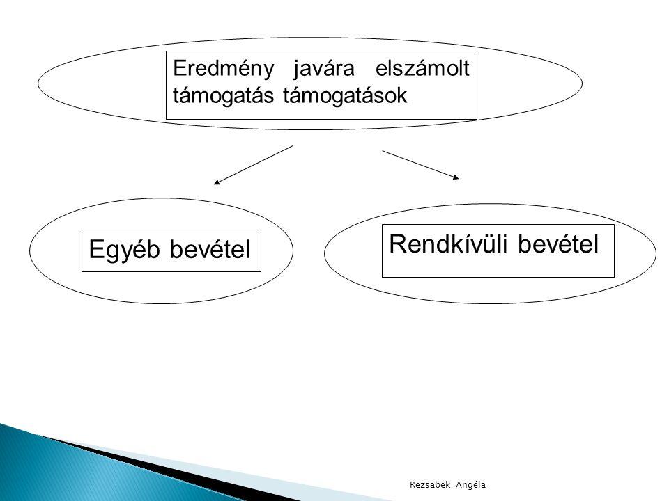 Rezsabek Angéla Eredmény javára elszámolt támogatás támogatások Egyéb bevétel Rendkívüli bevétel