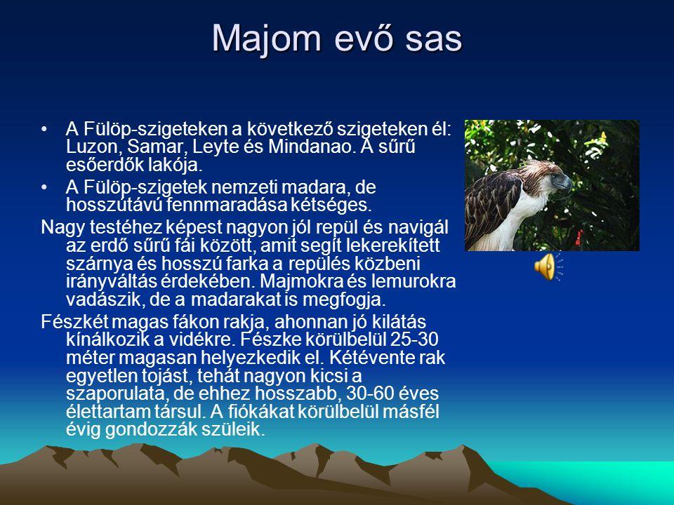 Parlagi sas A parlagi sas sztyepék és nagy nyílt, területek ragadozó madara. Különösen kedveli a füves és ingoványos térséget, ahol, elszórtan álló fá
