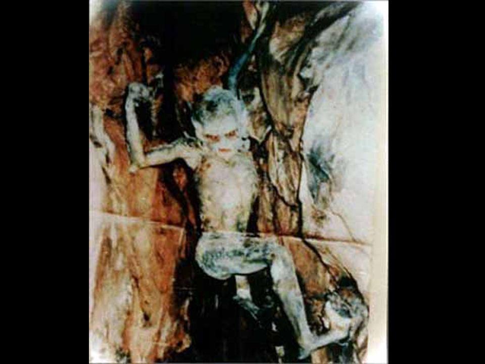 A következő képet bizonyítékként használták egy nagyon különös balesettel kapcsolatos rendőrségi nyomozás során, amelynek kiváltó oka az volt, hogy va