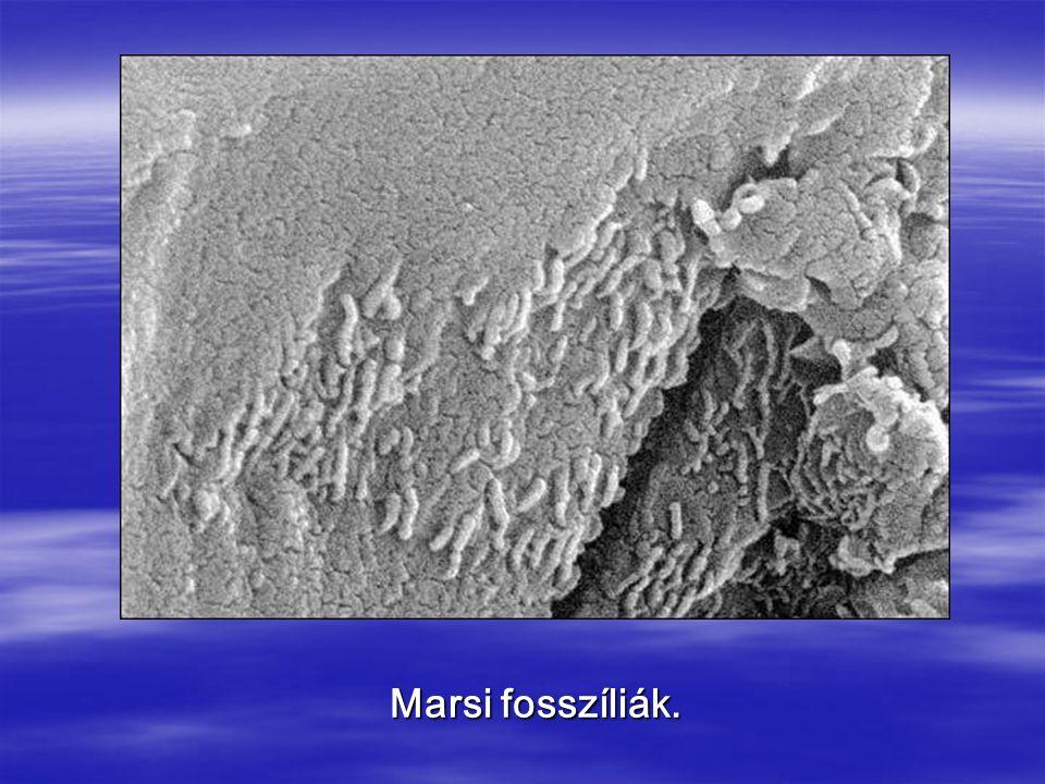 Marsi fosszíliák.