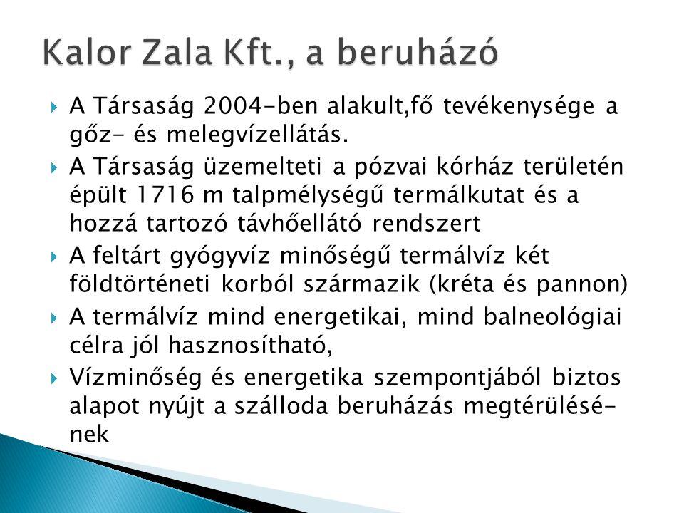  A Társaság 2004-ben alakult,fő tevékenysége a gőz- és melegvízellátás.