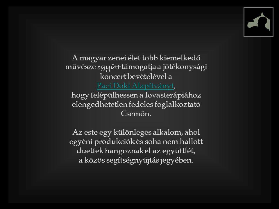 A magyar zenei élet több kiemelkedő művésze együtt támogatja a jótékonysági koncert bevételével a Paci Doki AlapítványtPaci Doki Alapítványt, hogy felépülhessen a lovasterápiához elengedhetetlen fedeles foglalkoztató Csemőn.