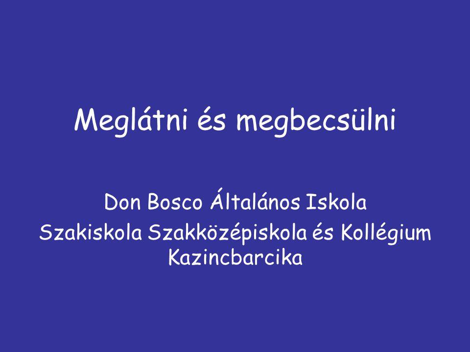 Meglátni és megbecsülni Don Bosco Általános Iskola Szakiskola Szakközépiskola és Kollégium Kazincbarcika