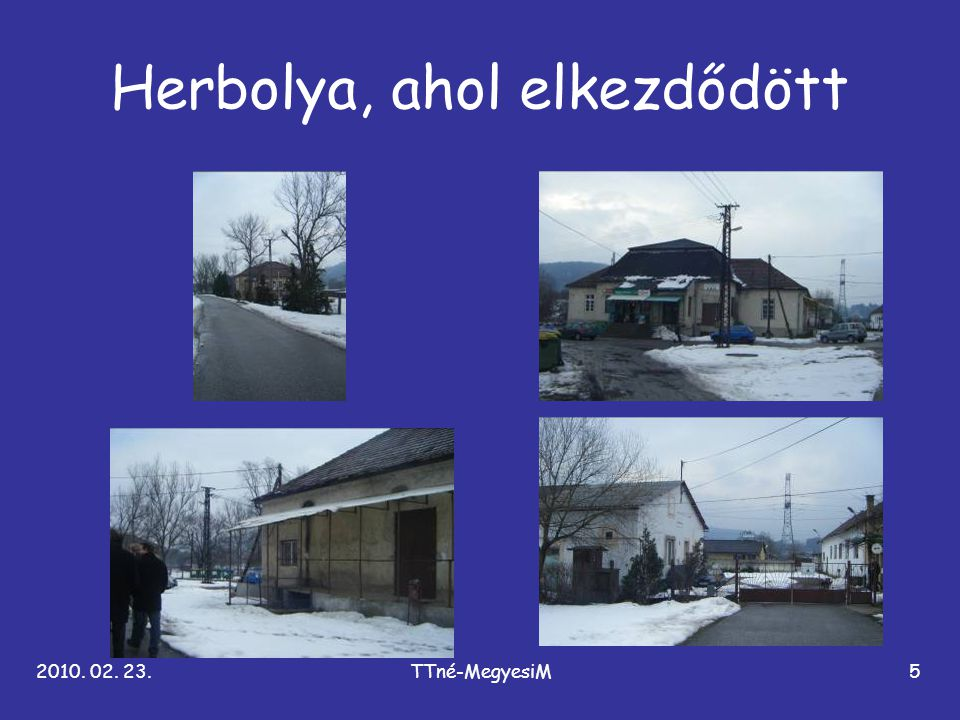 2010. 02. 23.TTné-MegyesiM5 Herbolya, ahol elkezdődött