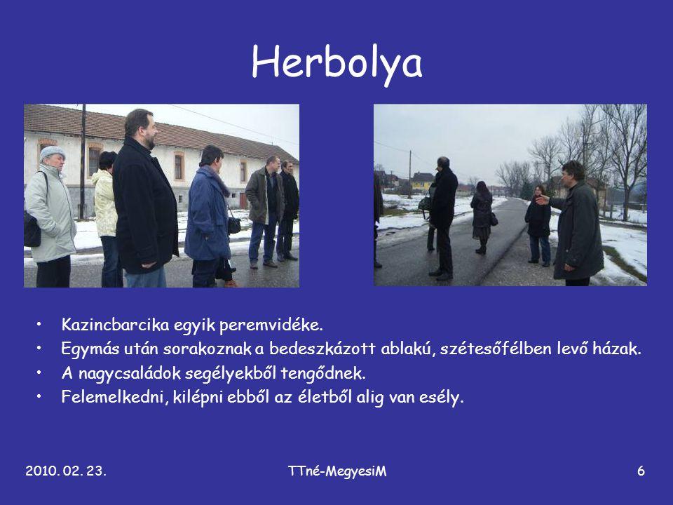 2010. 02. 23.TTné-MegyesiM6 Herbolya •Kazincbarcika egyik peremvidéke. •Egymás után sorakoznak a bedeszkázott ablakú, szétesőfélben levő házak. •A nag