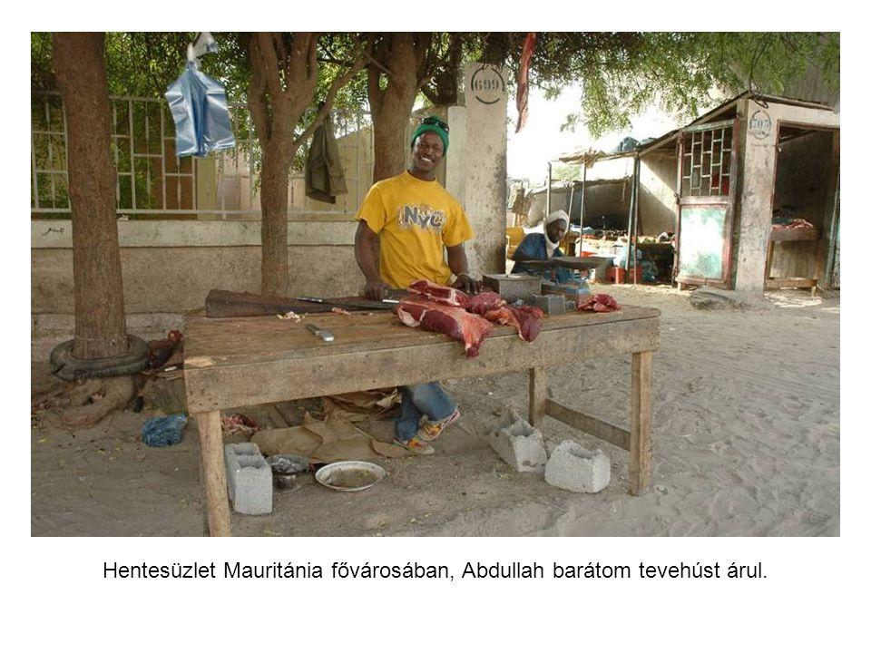 Mauritániában katonák vigyázták a táborunkat.