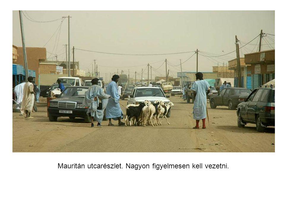 Hentesüzlet Mauritánia fővárosában, Abdullah barátom tevehúst árul.