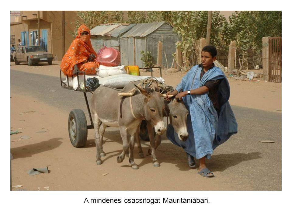 Mauritán utcarészlet. Nagyon figyelmesen kell vezetni.