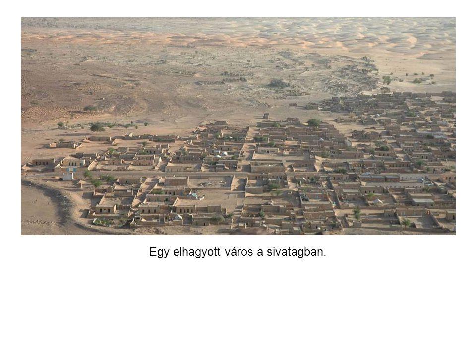 A mindenes csacsifogat Mauritániában.