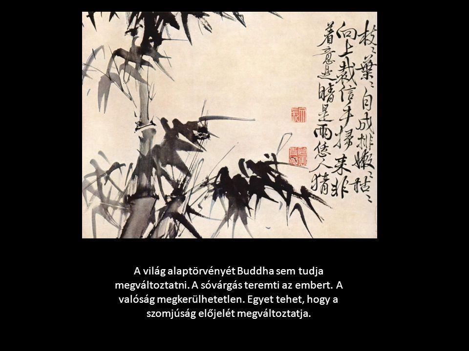 A világ alaptörvényét Buddha sem tudja megváltoztatni. A sóvárgás teremti az embert. A valóság megkerülhetetlen. Egyet tehet, hogy a szomjúság előjelé