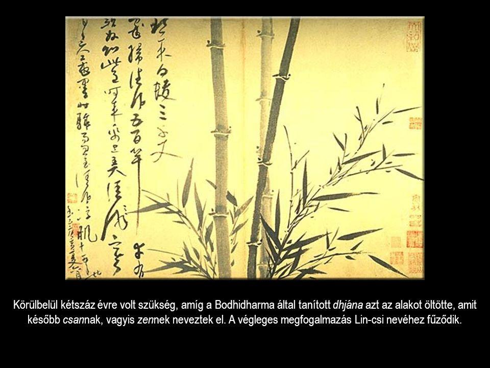 Körülbelül kétszáz évre volt szükség, amíg a Bodhidharma által tanított dhjána azt az alakot öltötte, amit később csan nak, vagyis zen nek neveztek el