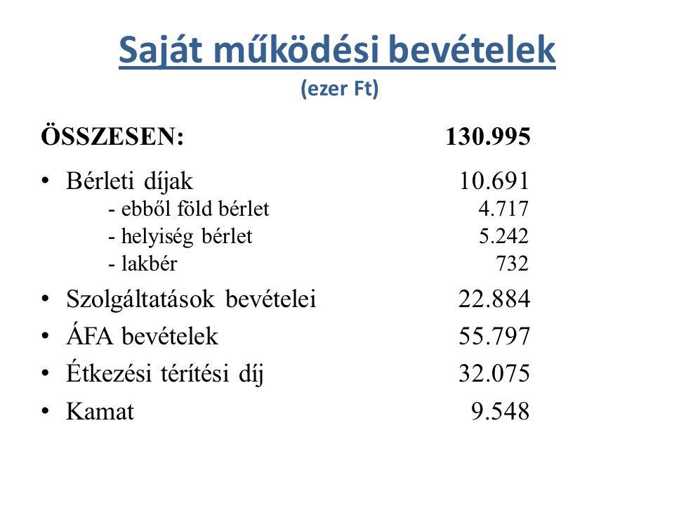 Saját működési bevételek (ezer Ft) ÖSSZESEN:130.995 • Bérleti díjak 10.691 - ebből föld bérlet 4.717 - helyiség bérlet 5.242 - lakbér 732 • Szolgáltatások bevételei 22.884 • ÁFA bevételek 55.797 • Étkezési térítési díj 32.075 • Kamat 9.548