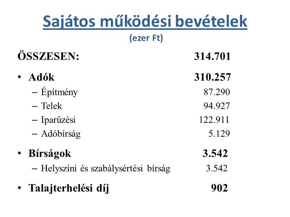 Egyéb bevételek (ezer Ft) ÖSSZESEN:56.064 • 2011-es felhasznált pénzmaradvány 31.179 • Egyéb bevételek (TÁMOP, ÁROP, népszámlálás) 24.885