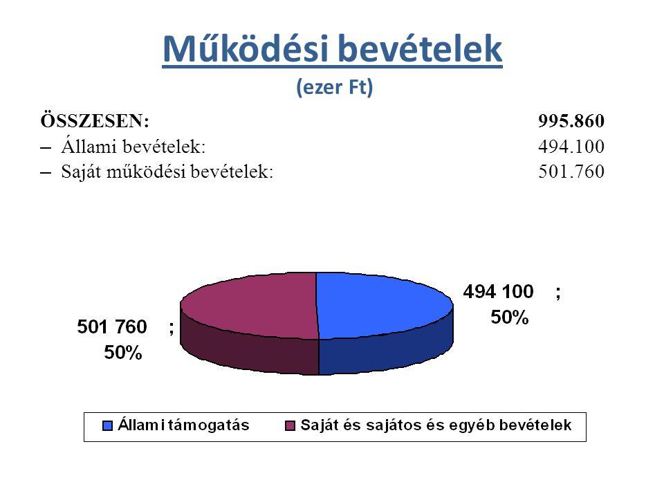 Öregiskola kiadásai és bevételei (ezer Ft) KIADÁSOK ÖSSZESEN: 30.080 – Működési kiadások: 27.506 ebből: - személyi juttatások és járulékai 15.553 - dologi kiadások 11.953 – Felhalmozási kiadások: 2.574
