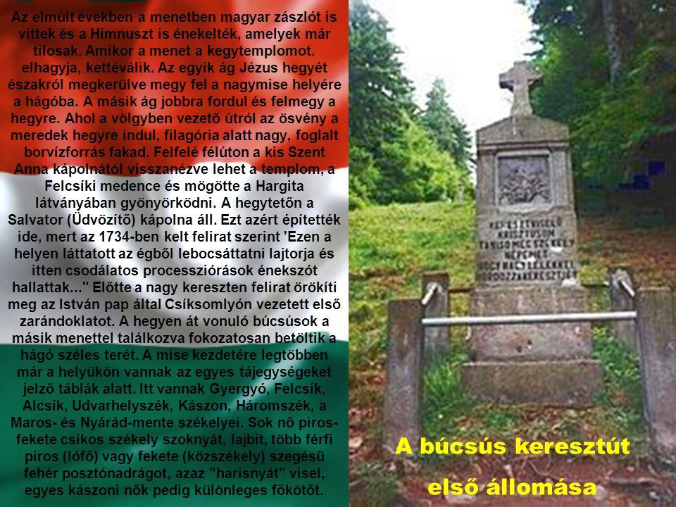 Az elmúlt években a menetben magyar zászlót is vittek és a Himnuszt is énekelték, amelyek már tilosak.