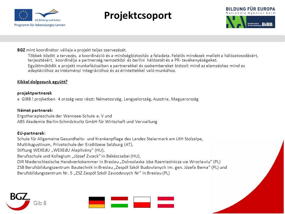 Gib 8 Projektcsoport BGZ mint koordinátor vállaja a projekt teljes szervezését.