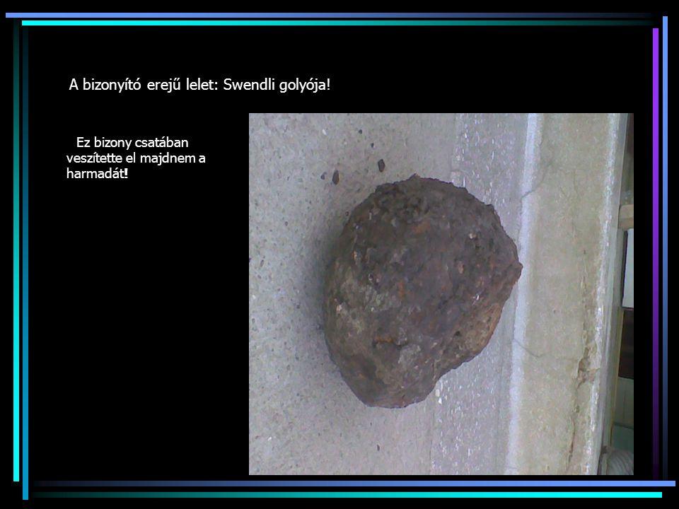 A bizonyító erejű lelet: Swendli golyója! Ez bizony csatában veszítette el majdnem a harmadát!