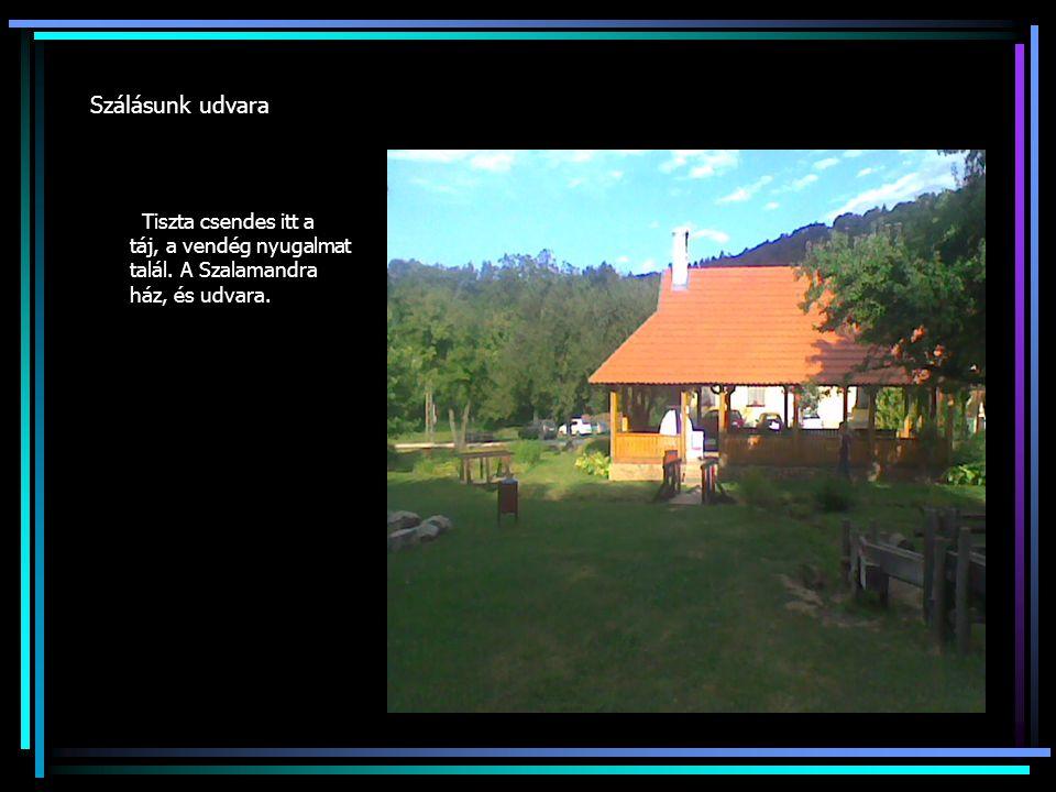Szálásunk udvara Tiszta csendes itt a táj, a vendég nyugalmat talál. A Szalamandra ház, és udvara.
