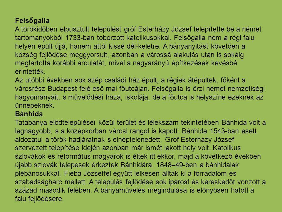 Felsőgalla A törökidőben elpusztult települést gróf Esterházy József telepítette be a német tartományokból 1733-ban toborzott katolikusokkal. Felsőgal