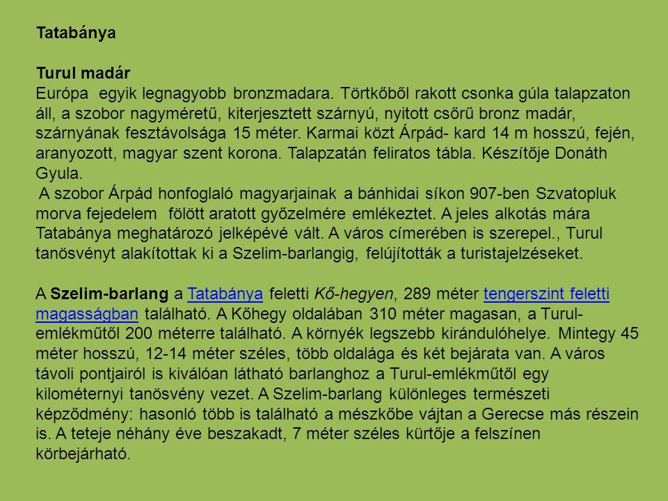Tatabánya Turul madár Európa egyik legnagyobb bronzmadara. Törtkőből rakott csonka gúla talapzaton áll, a szobor nagyméretű, kiterjesztett szárnyú, ny