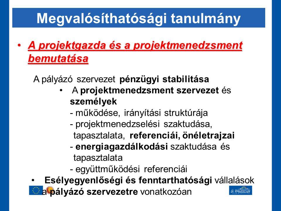 Megvalósíthatósági tanulmány •A projektgazda és a projektmenedzsment bemutatása A pályázó szervezet pénzügyi stabilitása • A projektmenedzsment szerve
