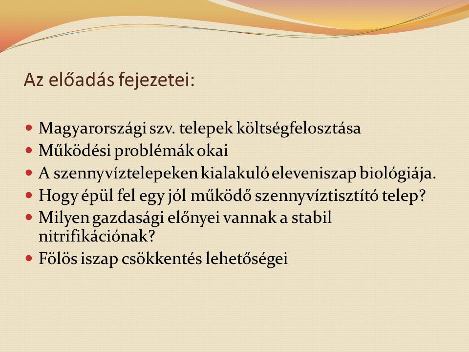 Az előadás fejezetei:  Magyarországi szv. telepek költségfelosztása  Működési problémák okai  A szennyvíztelepeken kialakuló eleveniszap biológiája