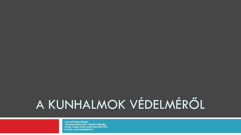 A KUNHALMOK VÉDELMÉRŐL Szerző: Babai Dániel Szerkesztette: Erdei-Gulyás Gabriella Fotók: Origo Web Team HQL 2010 Kft.