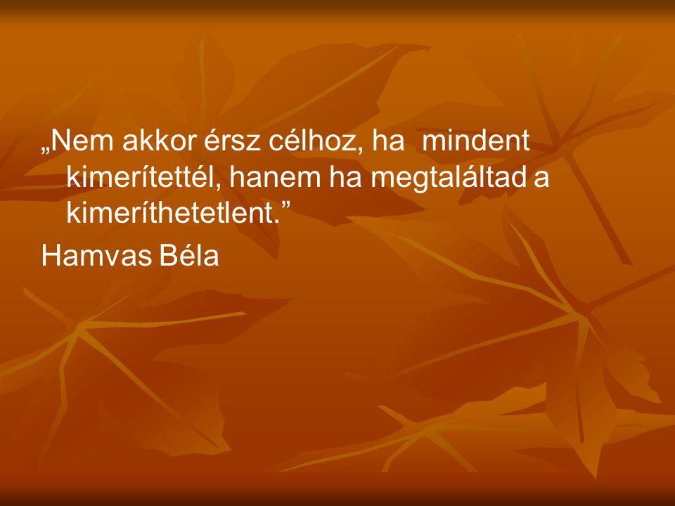 """""""Nem akkor érsz célhoz, ha mindent kimerítettél, hanem ha megtaláltad a kimeríthetetlent."""" Hamvas Béla"""