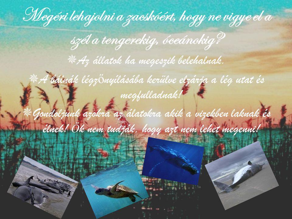 Megéri lehajolni a zacskóért, hogy ne vigye el a szél a tengerekig, óceánokig?  Az állatok ha megeszik belehalnak.  A bálnák légz ő nyílásába kerülv