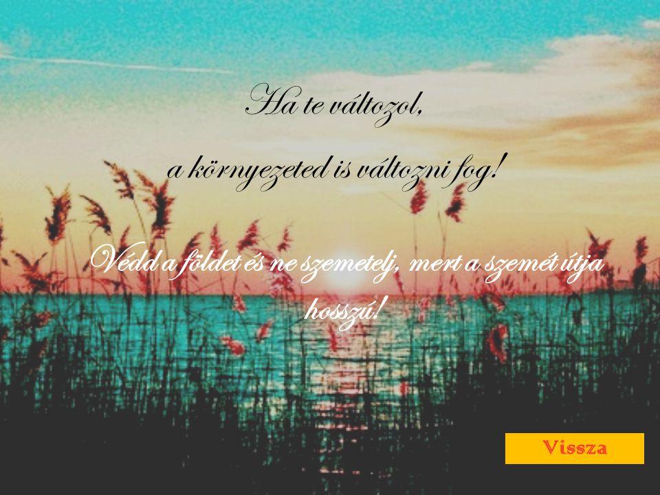 Ha te változol, a környezeted is változni fog! Védd a földet és ne szemetelj, mert a szemét útja hosszú! Vissza