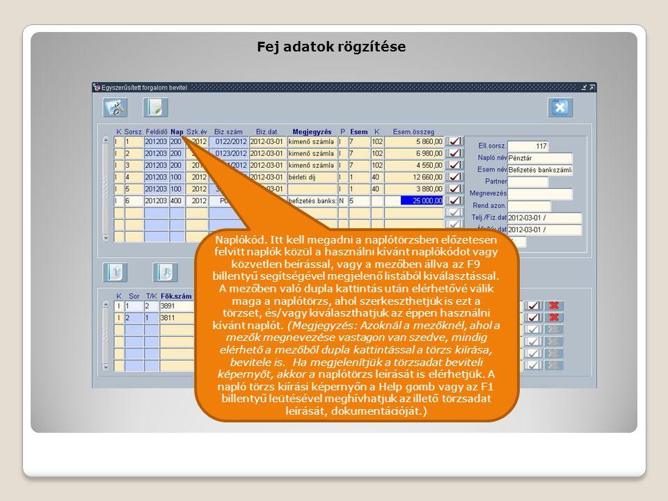 Fej adatok rögzítése Naplókód. Itt kell megadni a naplótörzsben előzetesen felvitt naplók közül a használni kívánt naplókódot vagy közvetlen beírással
