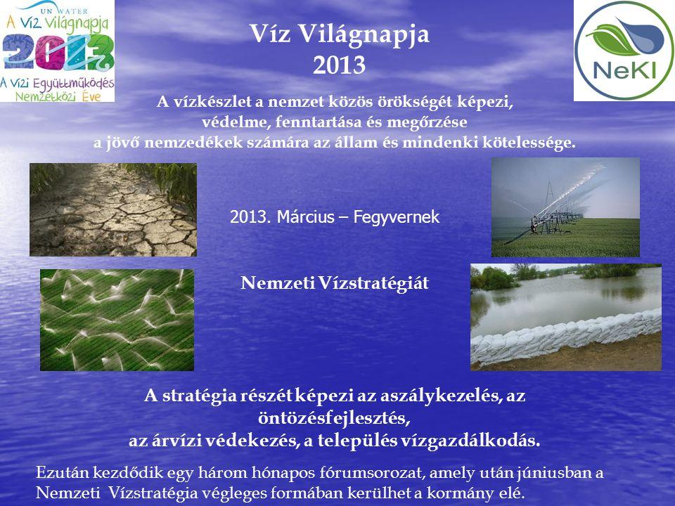 Víz Világnapja 2013 A vízkészlet a nemzet közös örökségét képezi, védelme, fenntartása és megőrzése a jövő nemzedékek számára az állam és mindenki köt