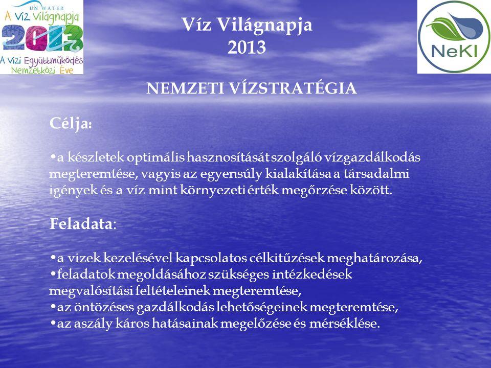 Víz Világnapja 2013 Célja : •a készletek optimális hasznosítását szolgáló vízgazdálkodás megteremtése, vagyis az egyensúly kialakítása a társadalmi ig